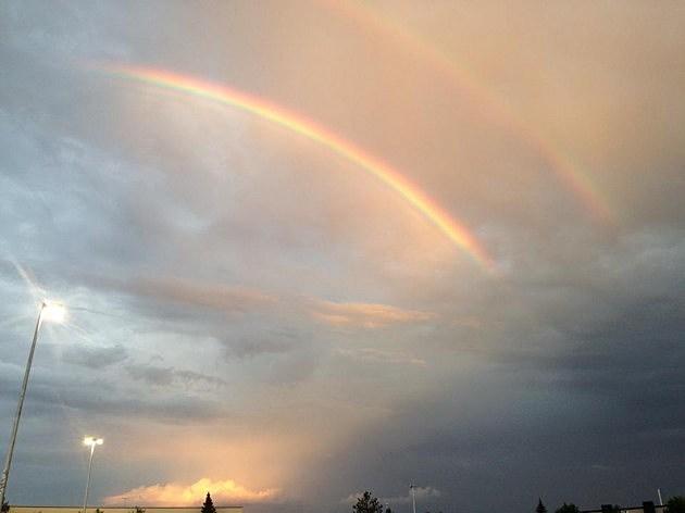 RibFest Rainbow